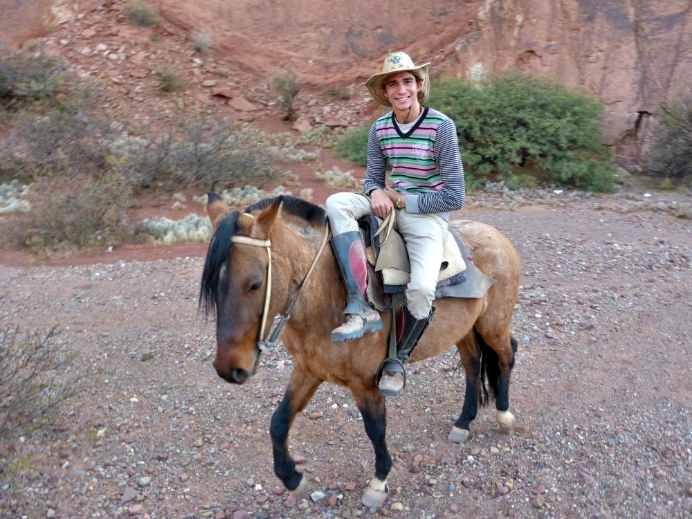 bolivia-caballo-desierto