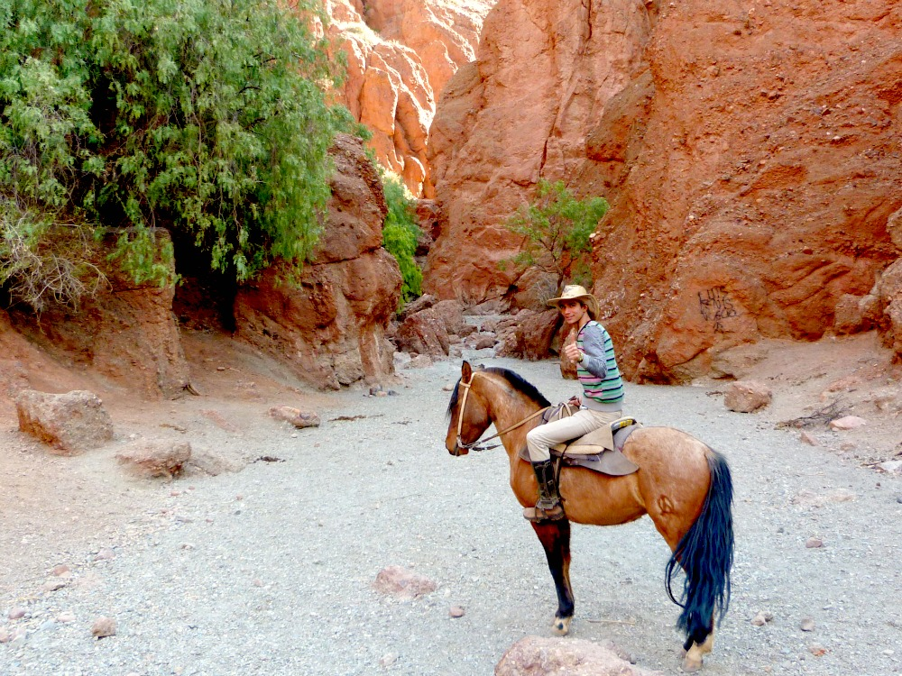 bolivia-excircion-caballo