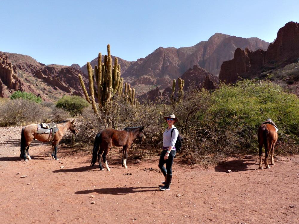 caballos-bolivia-tupisa
