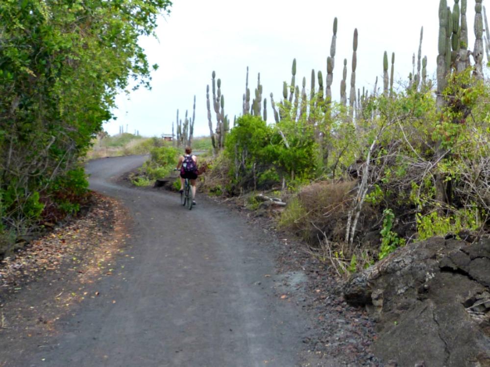 galapagos-ruta-bisicleta